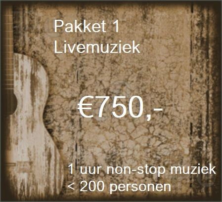 Pakket 1: Livemuziek voor 1 uur met zanger/gitarist Stephan Barneveld - tot 200 personen - muziek en feest voor bedrijfsfeesten, themafeesten, bruiloften, verjaardagsfeesten, jubileumfeesten of gewoon feest