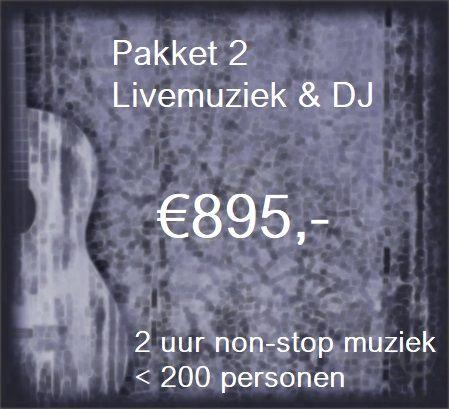 Pakket 2: Livemuziek voor 2 uur met zanger/gitarist Stephan Barneveld & DJ - tot 200 personen - muziek en feest voor bedrijfsfeesten, personeelsfeesten, themafeesten, bruiloften, verjaardagsfeesten, jubileumfeesten of gewoon feest