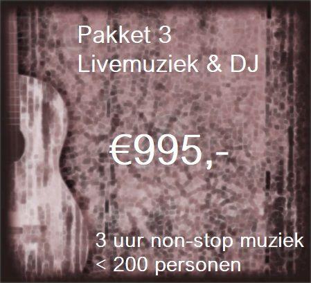 Pakket 3: Livemuziek voor 3 uur non-stop feest met zanger/gitarist Stephan Barneveld & DJ - tot 200 personen - muziek en feest voor bedrijfsfeesten, personeelsfeesten, themafeesten, bruiloften, verjaardagsfeesten, jubileumfeesten of gewoon feest