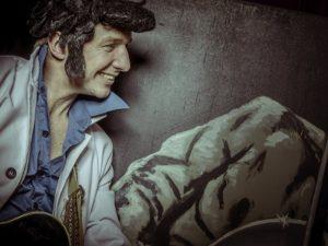 Rock around the Clock - 60's Themafeest met zanger/gitarist