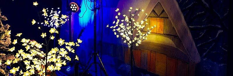 Winter Wonderland - winters themafeest met livemuziek, dj, licht, geluid en decoratie - voor de meest gezellige winterdagen - Feest voor bedrijfsfeesten, personeelsfeest, kerstfeest, verenigingen, verjaardagen, prive feesten of bruiloftsfeesten - sprookjesachtig feest ook heel geschikt voor bruiloften en huwelijksfeesten - feest